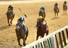 Tapwrit overtook Irish War Cry late to win the 149th Belmont Stakes. But with no Triple Crown on the line, the Derby and Preakness winners took a pass.