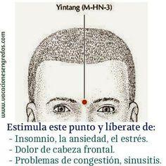 MEDICO HOMEOPATA IRIOLOGO,ACUPUNTURA,FLORES BACH,PSICOTERAPIA- BOLIVAR…