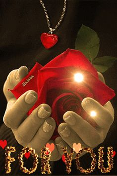 Animated gif find share on giphy I Love You Pictures, Love You Gif, Beautiful Love Pictures, Beautiful Gif, Love Photos, Beautiful Roses, Good Night Gif, Night Love, Good Morning Love