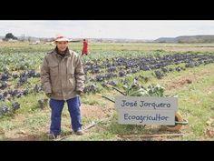 Qué hacemos, quiénes somos en la #AgriculturaEcologica