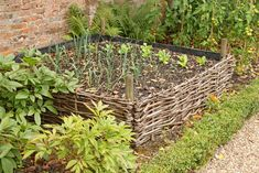 It's well known that raised beds are one of the most efficient and effective ways to garden. They ensure a bountiful harvest by encouraging aeration and drainage, extending the growing seasons and minimizing damage by Making Raised Beds, Raised Garden Beds, Growing Gardens, Growing Herbs, Straw Bale Gardening, Starting A Vegetable Garden, Square Foot Gardening, Grow Your Own Food, Chickens Backyard
