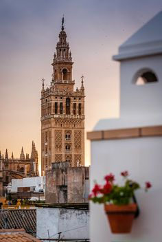 La Giralda above the roofs of Seville, Spain