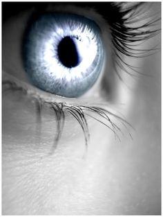 silver eye | Silver_Eye.jpg