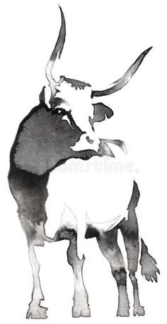 Black And White Monochrome Painting With Water And Ink Draw Bull Illustration Stock Illustration - Illustration of draw, native: 79070832 Bull Painting, Ink Painting, Watercolor Art, Cow Drawing, Black Paper Drawing, Animal Paintings, Animal Drawings, Ink Illustrations, Illustration Art