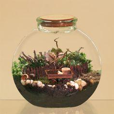A mini garden will make you smile:)
