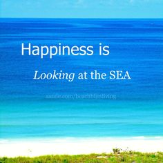 Looking at the sea is also Bliss!