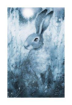 Moonlight Hare