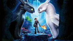 An updated creation as celebration for the new How to Train Your Dragon movie, out now. / Mixed Content: Contains Artwork from the original creators aswell as my own, Up-scaled to Resolution for the clearest picture, pixel fixes Original Wallpaper, Hd Wallpaper, Toothless And Stitch, Dragon Movies, Cartoon Dragon, Fashion Casual, White Dragon, Dragon 2, Dragon Pattern
