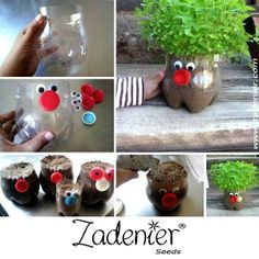Teach children in a fun way how to sow vegetables and herbs. www.zadenier.com Soda Bottles, Plastic Bottles, Diy Crafts For Kids, Arts And Crafts, Kids Diy, Craft Activities, Yule, Flower Pots, Outdoor Gardens