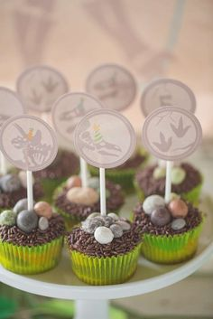 Dino egg cupcakes at a dinosaur birthday party! See more party planning ideas at CatchMyParty.com!