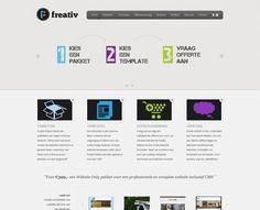 De nieuwe website van mijn bedrijf 'Freativ' (www.freativ.nl)