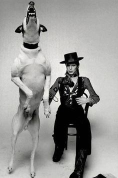 How cool is this shot of David Bowie and this Diamond Dog? That diamond Dog looks like a sighthound!