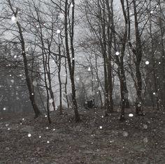 Spring Storm by avardwoolaver