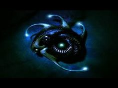 Criaturas bioluminiscentes - Increible naturaleza