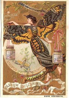 Lieberg's Co Fleisch Extract Vintage German Lithograph Trade Card