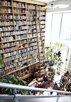 All that beautiful light. All those beautiful books. The plants. The missions style furniture. I love it