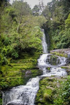 Photo Tour of The Catlins, New Zealand