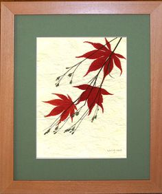 pictures created with pressed flowers, pressed leaves in frames by Liming Twanmoh