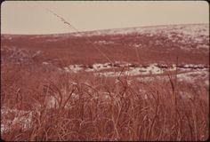Kansas in winter