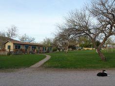 Circle Z Ranch: Cantina