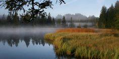 Etang de la Gruère Canada, River, Outdoor, Nature Reserve, Mountains, Law School, Outdoors, Outdoor Living, Garden