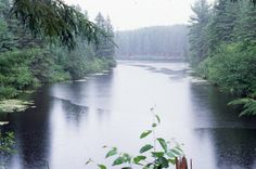 1995PogLake - Love this photo!! This image was found on this great website,  notes.newmaker.net Algonquin Park, Paddle Boarding, Notes, Camping, River, Website, Outdoor, Image, Beautiful
