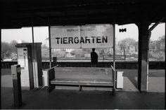 Tiergarten 1993