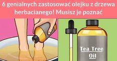 Olej z drzewa herbacianego ma wiele zastosowań. Można za jego pomocą zadbać o skórę, włosy, a nawet zdrowie stóp. Poznaj 6 przydatnych zastosowań tego oleju. #Leczenie trądziku Badania naukowe potwierdziły, ... Water Bottle, Hair Beauty, Bb, Water Bottles, Cute Hair
