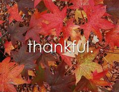 I am thankful for 1. My wonderful family that loves and cares for me 2! For my perfect father above all others who gave his life for me because he truly loves me 3. Meat 4. The internet 5. Wifi 6. 3G 7.socks 8. Music 9. Heated blankets 10. Electricity