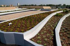 Garten auf dem Dach des Wissenschaftszentrums, Polen