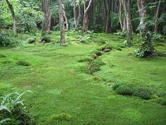 Japansicher Moosgarten