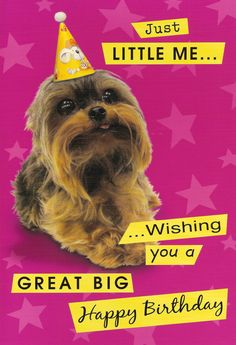 Yorkie Birthday Card