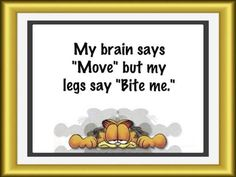 """My brain says """"move"""" but my legs say """"bite me""""... Aah the joys of a #spoonie.                                                                                                                                                      More"""