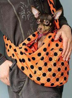 """Artes da Lisandra: """"Sling"""" pra cachorro"""