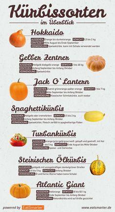 Eat Smarter: Kürbis Inforgrafik - Alle Kürbissorten auf einen Blick! / Pumpkin cheat sheet