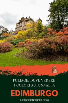 Foliage a Edimburgo: dove vedere i colori autunnali Travel Inspiration, Tips, Movies, Movie Posters, Fall, Edinburgh, Fotografia, Autumn, Advice