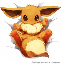 Pokemon - Eevee I want to hug him so much so cute! Fotos Do Pokemon, Gif Pokemon, Baby Pokemon, Pokemon Memes, Cool Pokemon, Eevee Cute, Pokemon Eeveelutions, Eevee Evolutions, Cute Pikachu