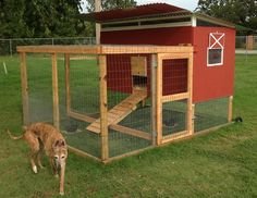 Here's the chicken tractor I adapted from the Kerr Center's (in Poteau, OK) chicken tractor. Our 9 year old wanted it to look like a barn, s...