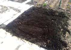 "Free Coffee Grounds from Starbucks! also dumped used coffee grounds over the top to use as a mulch (just pop into your local Starbucks and ask for ""grounds for your garden"" and they will give you a whole trash bag full of used espresso grounds). Landscaping Near Me, Luxury Landscaping, Garden Landscaping, How To Kill Grass, Uses For Coffee Grounds, Hummingbird Garden, Urban Farming, How To Level Ground, Garden Design"