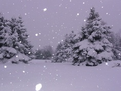 Let it Snow, let it snow, let it snow  as if we had a choice ; )  I LOVE SNOW!!!