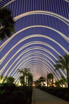 Valencia, Spain - The Umbracle is a landscaped walk with vegetation characteristic of the Mediterranean, of the Region of Valencia, and of tropical countries. It was designed as a entrance to the City of Arts and Sciences