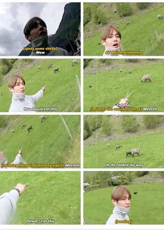 The sheep probably had a shock when it realized it was V from BTS