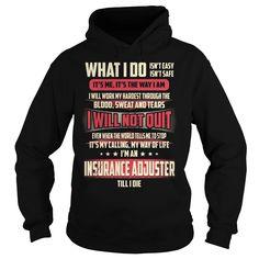 Insurance Adjuster Job Title - What I do