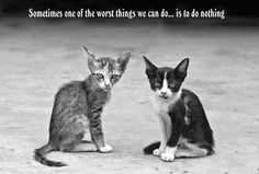 Sometimes one of the worse things we can do   ....   is to do nothing ....