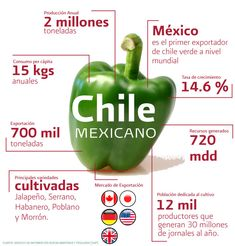 """Information """" importante"""" Chile"""