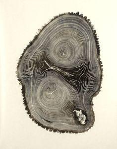 Bryan Nash Gill Woodcuts