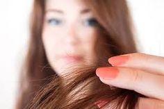 Se os cabelos possuem muitas pontas duplas, é indicado fazer esse procedimento duas vezes por semana...