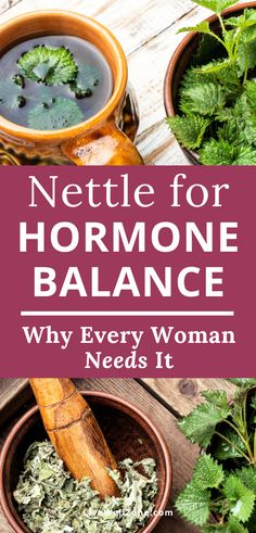 Using stinging nettle for hormones can help hormonal acne, hair loss, weight loss and more. Learn the benefits + how to make nettle tea. Healing Herbs, Medicinal Herbs, Natural Healing, Natural Herbs, Natural Health Remedies, Herbal Remedies, Cold Remedies, Natural Medicine, Herbal Medicine
