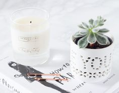Caring For Candles & Cacti