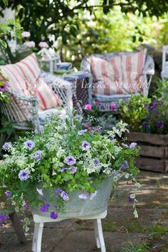 patio planting in a zinc container elevated on a small bench or stool